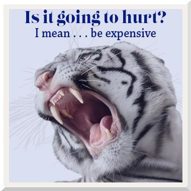 Is it going to hurt … I mean, be expensive?