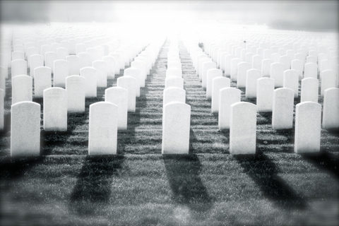 Remember the cost. Image of military tombstones