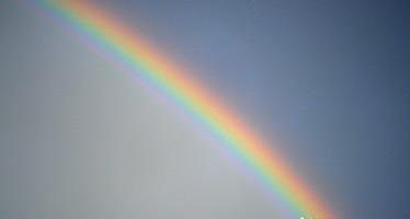 Rainbow: Identifying Expectations